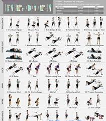 photos of home gym program