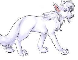 white wolf drawing anime. Plain White White Wolf Inside Wolf Drawing Anime U