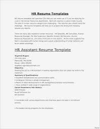 Model Resume Format Unique Sample Resume Word Format New