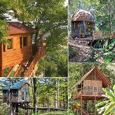 Category Treehouses Glamping Destinations  Glamping GetawayTreehouse Vacation California