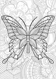 Butterflies Insects Coloring Pages For Adults