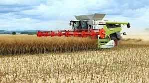 Harvest 2020: Oxford rapeseed grower pleased with 3.5t/ha yield - Farmers  Weekly