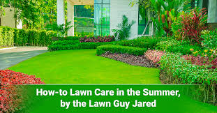 how to lawn care in the summer by the lawn guy jared