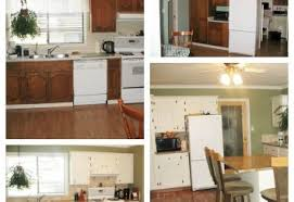 painted oak kitchen cabinets before and after. Painted Kitchens Before And After Oak Kitchen Cabinets