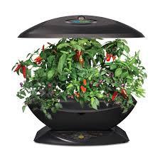 Indoor Kitchen Herb Garden Kit Amazoncom Miracle Gro Aerogarden 7 With Gourmet Herb Seed Kit