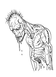 81 Dessins De Coloriage Plante Contre Zombie Imprimer
