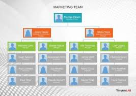 Company Structure Chart Template 001 Flow Chart Organizational Company Structure Formidable