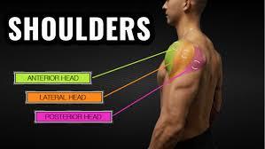 shoulder workout routine 4 exercises