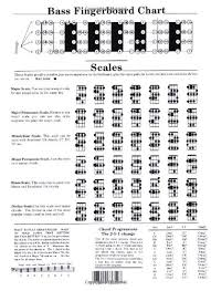 Buy Bass Guitar Chord Chart Book Online At Low Prices In