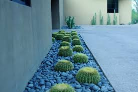 Small Picture Contemporary Cactus Garden
