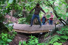Small Picture Students design and build new bridge at Botanical Garden