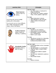 learning styles essay visual learning styles essay