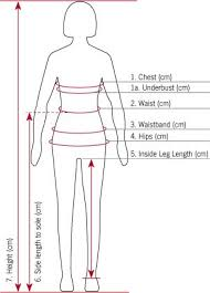Womens Chest Size Chart Cm Size Product Guides Kramer Equestrian