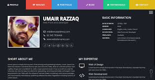 Interactive Resume Template ColorCV Interactive Resume Template by UmairRazzaq ThemeForest 1