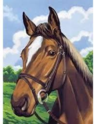 reeves horse portrait paint by number