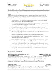 Mesmerizing Sap Technology Consultant Resume About Professional