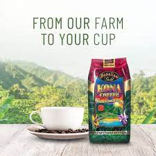Jazz coffee 24/7, jazz coffee music best ever, you must watching. Amazon Com Hawaiian Gold Kona Blend Coffee 2 Pound Pack Of 1 Roasted Coffee Beans Grocery Gourmet Food