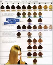 Hair Colour Level Chart Hair Color Levels 1 10 Chart Tattoo And Tattoo