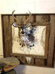 antler mounting ideas deer