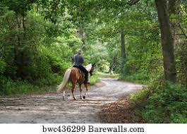 20,615 <b>Horseback riding Posters</b> and Art Prints | Barewalls