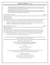 Business Analyst Resume Summary Examples Financial Business Analyst Resume 86