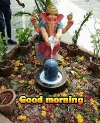 good morning ke wallpaper statue plant