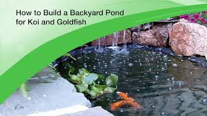 Small Picture How to Build a Backyard Pond for Koi and Goldfish Design and