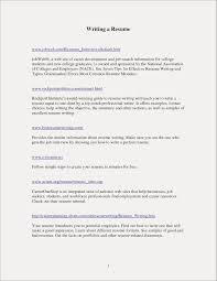 Resume Template For Entry Level Teacher Cool Gallery Resume Samples