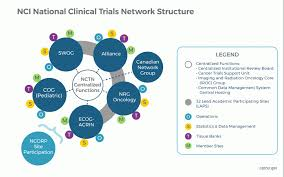 Clinical Trial Process Flow Chart Ppt Ncis National Clinical Trials Network Nctn National