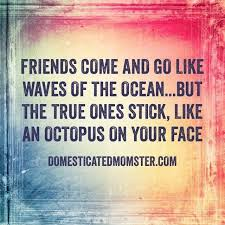 Quotes About Friendships Adorable Funny Quotes About Friends Domesticated Momster True Friendships