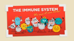 Image result for immune system