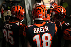 2400x1600 amazing cincinnati bengals wallpapers