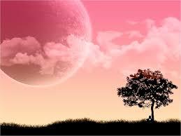 pink desktop wallpaper