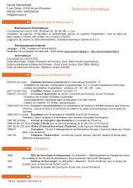 Modele De Cv Technicien Informatique Resume Template