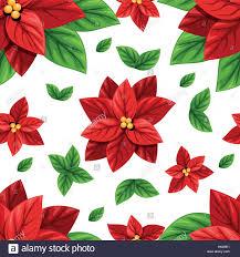 Schönen Roten Weihnachtsstern Blumen Und Grüne Blätter