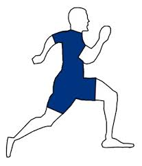 """Résultat de recherche d'images pour """"physique musculair"""""""