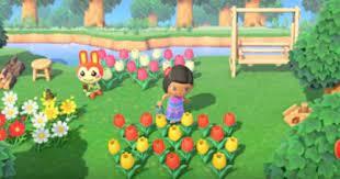 あつ 森 花 の 交配 効率