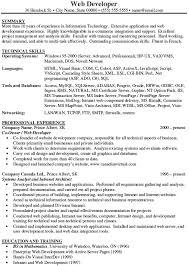 Net Developer Resume Web Developer Summary Resume Awesome