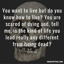 Stoicism Quotes Interesting Life Living And Death Seneca Stoic Stoicism Quotes Quote