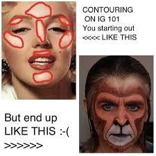 insram com makeup brush meme