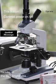 dark field microscopy dark field microscope