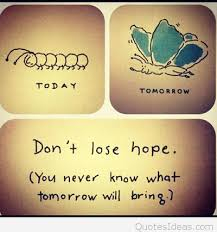 dont lose hope instagram quote