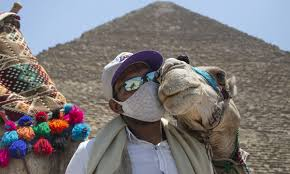Egypt signals revival of tourism amid COVID-19 - Global Times