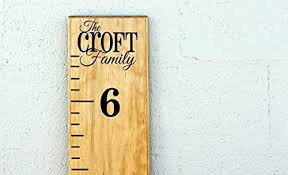 Vinyl Growth Chart Family Name Diy Vinyl Growth Chart Ruler Decal Kit