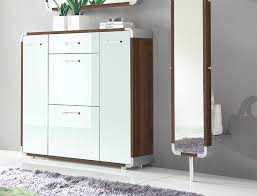 Image of: Modern Shoe Cabinet With Doors Ikea