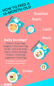 13 Month Old Baby Diet Chart 13 Month Old Toddler Month By Month
