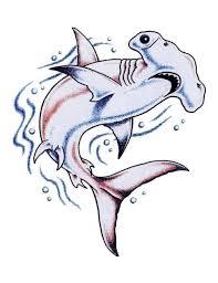 hammerhead shark tattoo drawing. Plain Shark Nice Hammerhead Shark Swimming Tattoo Stencil For Drawing Askideascom