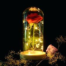 beauty and the beast rose new beauty and the beast rose red in a glass dome beauty and the beast