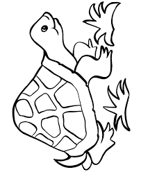 Small Picture Easy Shapes Coloring Pages Free Printable Happy Turtle Easy
