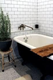 modern clawfoot bathtub decor plants and flowers modern bathroom design for spring